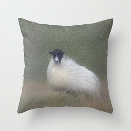 Moorland sheep  in the snow Throw Pillow