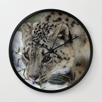 snow leopard Wall Clocks featuring Snow Leopard by PICSL8
