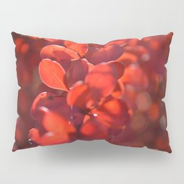 Vermilion Pillow Sham