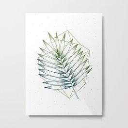 Geometry and Nature IV Metal Print