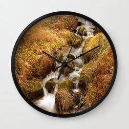 Places - Autumn in Dawyck Botanic Garden Scotland Wall Clock