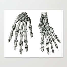 Hand & Foot Canvas Print