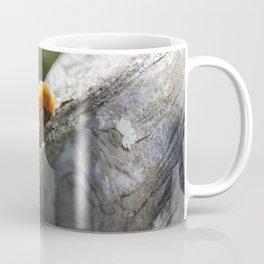 Mushroom Fence Coffee Mug