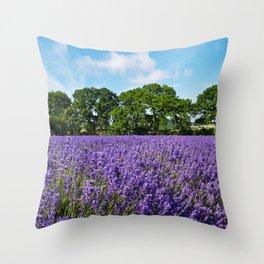 Ripening English Lavender Throw Pillow