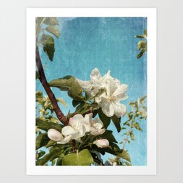 French Blossoms Art Print