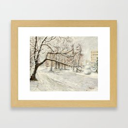 Walk in Winter Park Framed Art Print