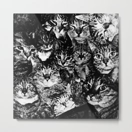 cat collage our beloved kitten cats watercolor splatters black white Metal Print