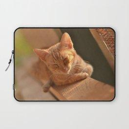 Sweet Oblivion Laptop Sleeve