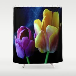 2-lips Shower Curtain