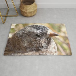 Watercolor Bird, Endangered Brown-capped Rosy Finch 01, AVC, RMNP, Colorado Rug