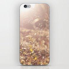 Fields. iPhone & iPod Skin