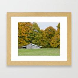 Across the Meadow Framed Art Print