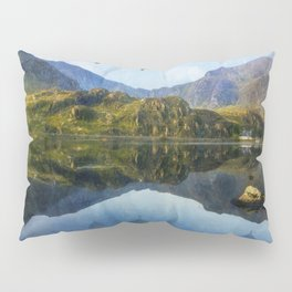 Morning Flight Pillow Sham