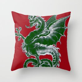 Italy Lover Italian Culture Italian American Dragon Gift Banner Throw Pillow