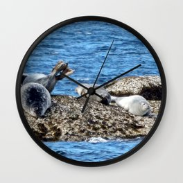 Seal Flips out on crowded rock Wall Clock