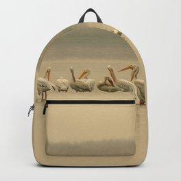 White Pelican Fleet I - Smoky Western Sky Backpack