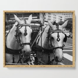 Two horses in the city Serving Tray