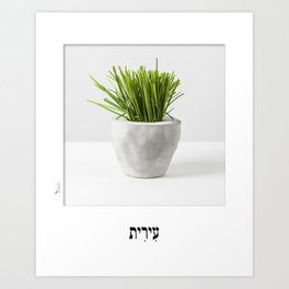 Chives planter poster hebrew label Art Print