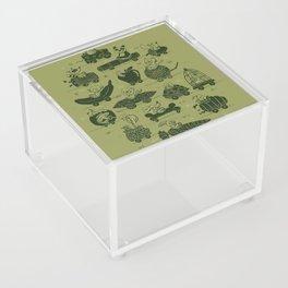Critter Cars Acrylic Box