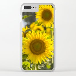Sunflowers happiness Clear iPhone Case