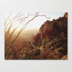 Desert Sunset Trail Canvas Print