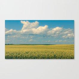 Prairie Summer; big blue skies and golden canola fields  Canvas Print
