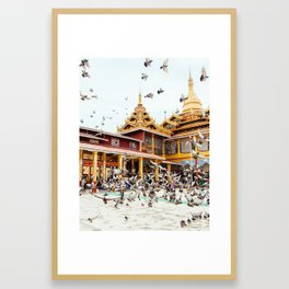 Pigeons descend on Buddhist Temple in Burma Fine Art Print Framed Art Print