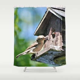 Tasty Bite for Baby Bird Shower Curtain