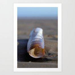 room2rent-spacious-seaviews, Razor Clam, Poolbeg Beach, Dublin Art Print