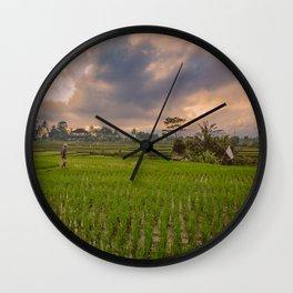 Bali rice field Wall Clock