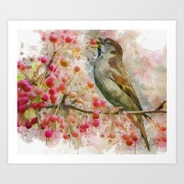 Hungry bird eating red berries. Art Print