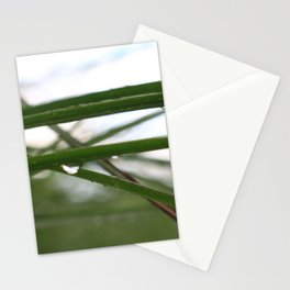 Wet Weeds Stationery Cards