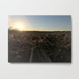 Tilled Cornfield Sunset Metal Print