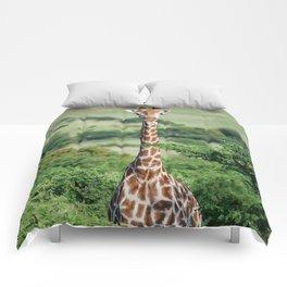 Giraffe Standing tall Comforters