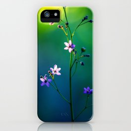 Forest Lights iPhone Case