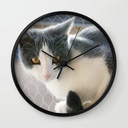 A Max And Mantle Bi Colour Cat Wall Clock