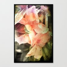 Playing with beauty Canvas Print