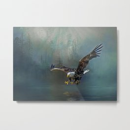 Bald eagle swooping for fish Metal Print