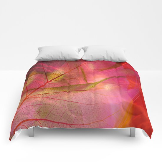 Insinuation Comforters