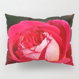 A Rose is a Rose Pillow Sham