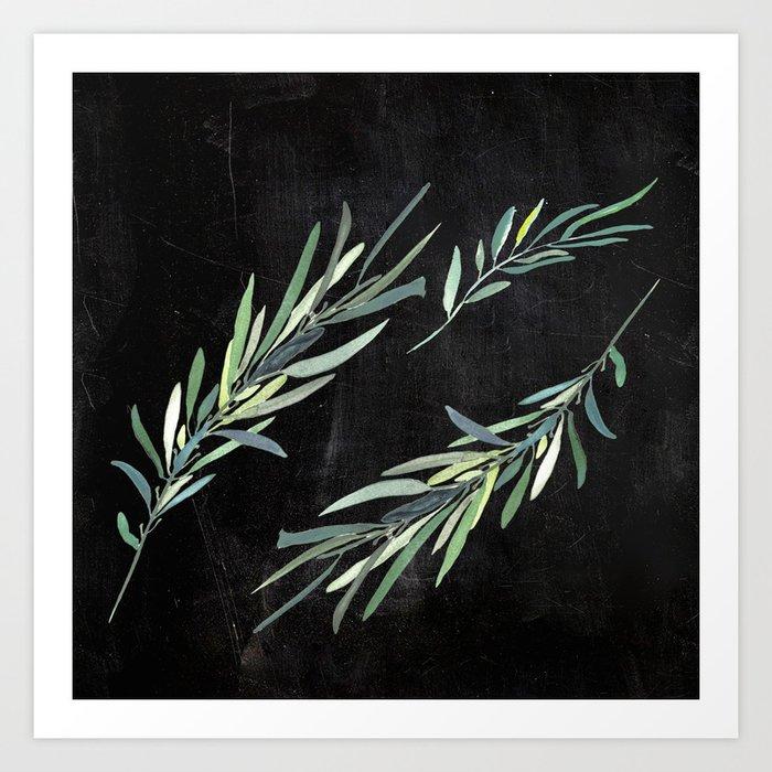 Eucalyptus leaves on chalkboard Art Print