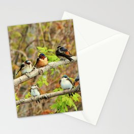 Spring Migration Fallout; 4 swallow species, 1 branch Stationery Cards
