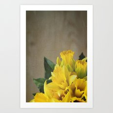 yellow daffodils Art Print