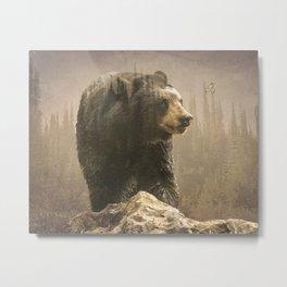 Black bear wonders Metal Print