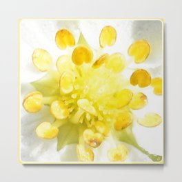 Yellow Stamen Sunshine | Nadia Bonello Metal Print