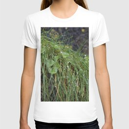 Dew Covered Coastal Plants on the Cliffs T-shirt