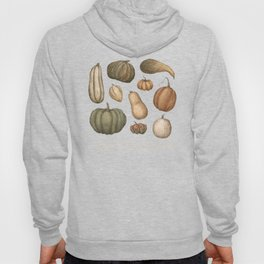 Pumpkins and Gourds Hoody