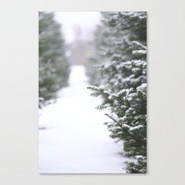 Snow Tree Farm Canvas Print
