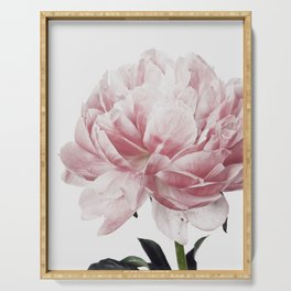 Peony, Flower, Pink, Plant, Trendy decor, Interior, Wall art, Photo Serving Tray