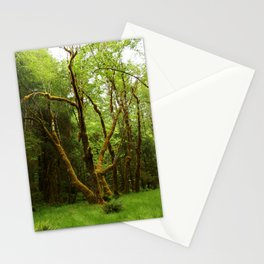 A Moos Laden Tree Stationery Cards